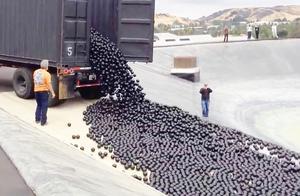 1小时生产1000个钢球!效率高,令人敬畏