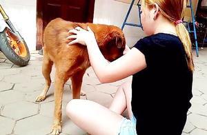 性感姐姐手里拿着食物,狗狗却不为所动,这是什么情况?