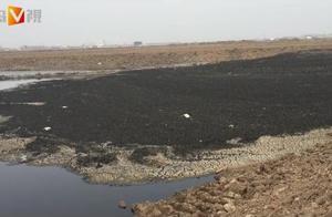 触目惊心!青岛上万方污泥倒进了胶州这处工地