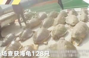 残害200多只海龟 舟山市检察机关起诉15人索赔657.6万元
