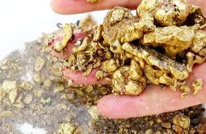 一夜暴富不是梦?老外海滩潜水发现大量黄金?网友:现实黄金矿工