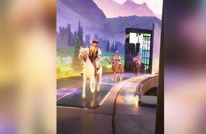"""表面上马儿在表演""""太空步"""",实际却是在用跑步机遛马!"""