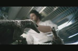 男子打破一个蛋,没想到蛋里面竟然是已经孵化了的恐龙