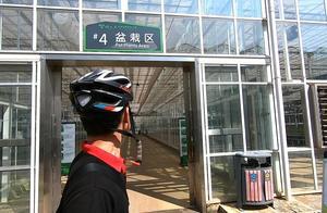 最终投资100多亿,海南桂林洋农业公园,请看我的评论真凭实据