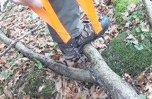 """19大学生发明新型""""锯木""""神器,不用油不用电,8秒锯断一棵树"""