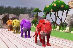 彩色动物教宝宝认识狮子、老虎、狗狗、狼、猎豹、牛、山羊、羚羊