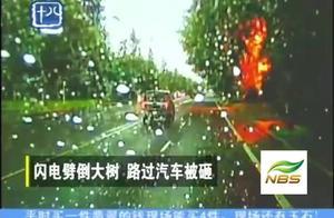 神奇!车主遭遇离奇车祸,罪魁祸首竟然是一道闪电?