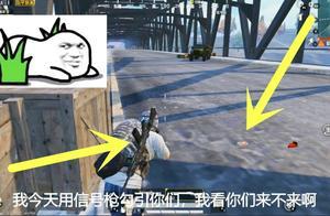 和平精英:不够肥用信号枪钓鱼堵桥?正愁没枪决赛圈获消音AWM!