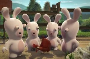 兔子想和公鸡一起玩耍 甚至还扯公鸡的脖子 但公鸡就是不理它