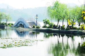 为什么节假日到杭州西湖旅游的人越来越多?看完长见识!