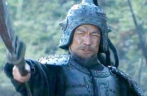 三国出场极早的悍将,刘备视他为肉中刺,孔明历次北伐都被他打败