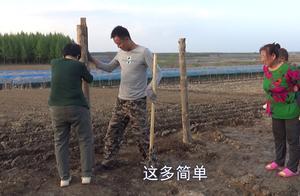 东北农村用啥围院子?容易腐烂的木头被淘汰,这方法太简单了!