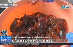 网传小龙虾感染肺吸虫?是真的吗?记者实测带你了解真相