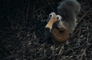 小松鼠来到鹰巢找坚果,恰巧碰到一只小鹰出生,二者又是一场争斗