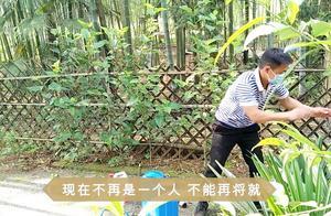 小院夏天蚊虫多,为了吉嫂不再将就,山锅兄弟驱蚊去虫大行动