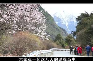 被称为318国道上最美的村庄,一个不为人知的地方——西藏林芝!