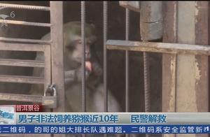 男子非法饲养猕猴近10年 民警解救