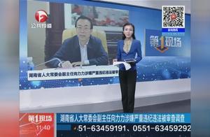 湖南省人大常委会副主任向力力涉嫌严重违纪违法被审查调查