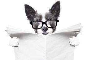 语文老师:审题和筛选信息能力不容忽视,掌握后考试高分错不了