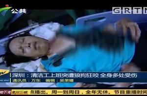 深圳:清洁工上班时 突遭两条狼狗疯狂撕咬,受伤严重
