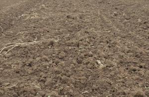 土地承包费下集:土地性质不明,返还承包费正在协商中!