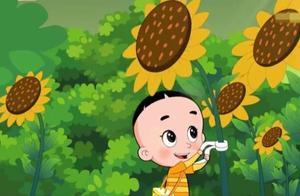 大头儿子看到向日葵转来转去,他觉得向日葵的脖子肯定会受伤的!