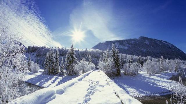 10首关于冬天的古诗有哪些