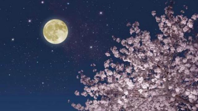 李白的诗中被誉为千古名句有哪些