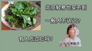 有人知道琼脂在哪里买么北京地区
