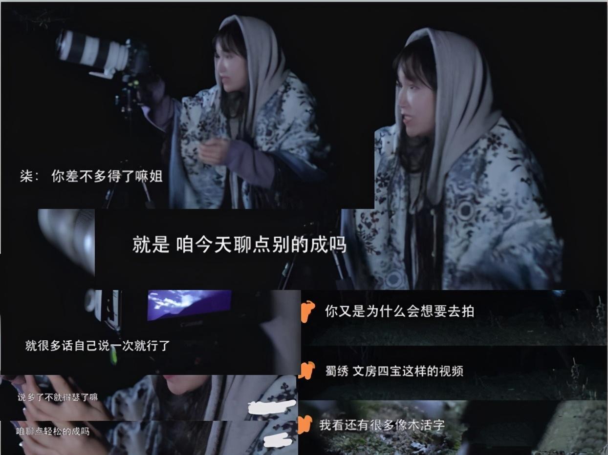 記者采訪網紅李子柒被懟是什么原因