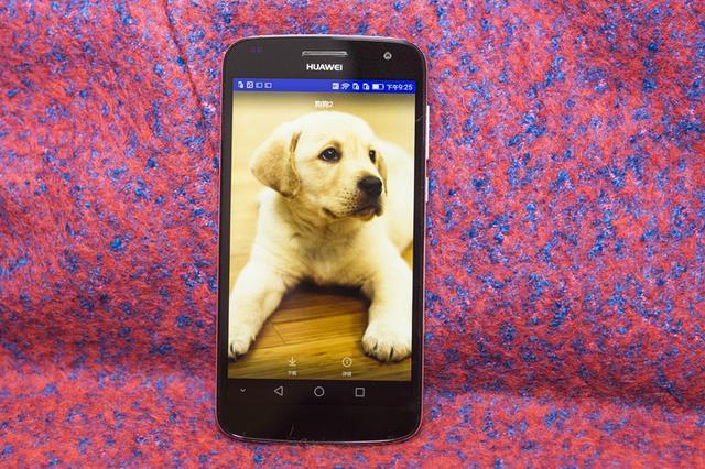 给我的萌宠拍张照金属身电信4G华为麦芒体验篇