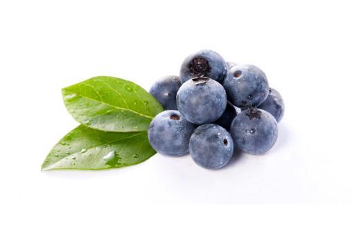 蓝莓怎么泡酒_蓝莓酒加工注意