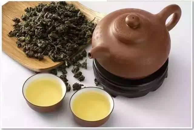 英德适合种什么品种的茶?