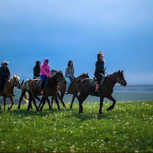 呼伦贝尔草原的星空原来这么美!