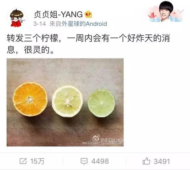 橙子、柠檬、桔子