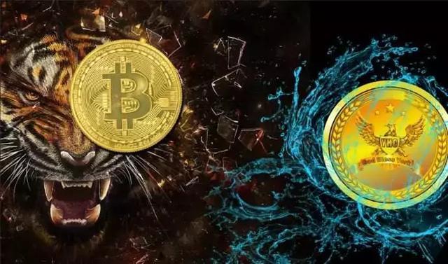 怎么分辨数字货币中的传销币?