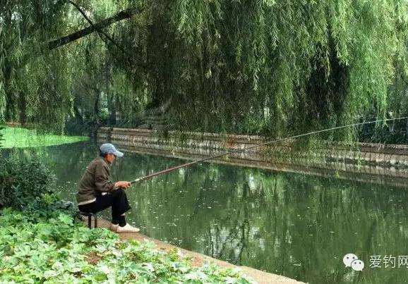 撒了肥水王的水库咋钓鱼