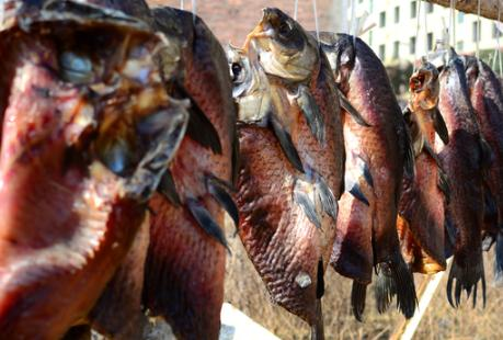 新鲜鱼肉用盐抹了之后放在冰箱能放置多久