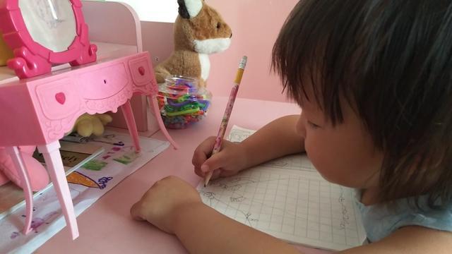 我的梦想是当一名画家作文300字