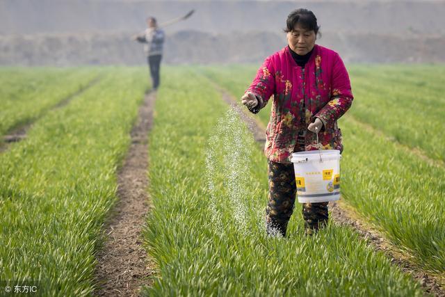 氮、磷、钾肥三种化肥不能混用吗