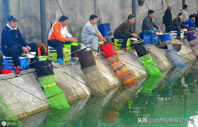 进去秋冬季节,钓鱼应该使用什么味型的饵料更加理想?