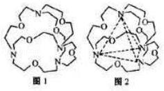 同一系列化合物(如HX)的分子间力的影响因素是: