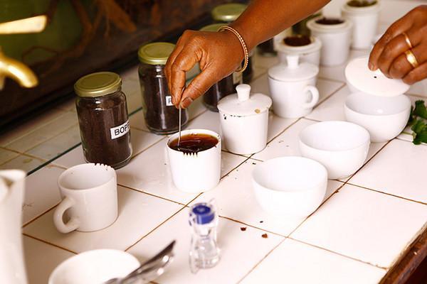 普洱茶的出口麦号怎么区分~~~