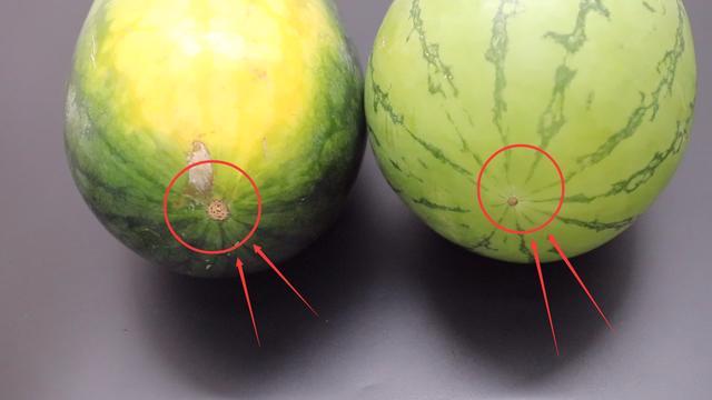 西瓜甜不甜,記住這個方法,保證一挑一個準,瓜農教的真管用