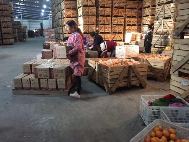 赣南脐橙多少钱一斤(2020年脐橙价格预测)