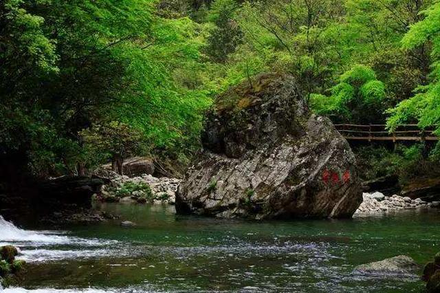陕西一景区再度走红,风景优美堪称避暑胜地,游客:还有鱼跃龙门