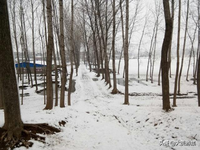 写家乡冬天景色的作文600字