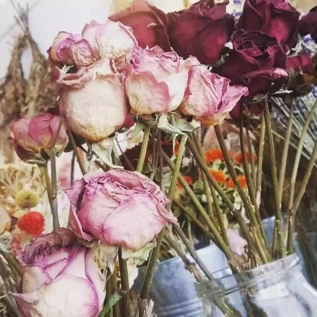 新鲜玫瑰花怎么做干玫瑰