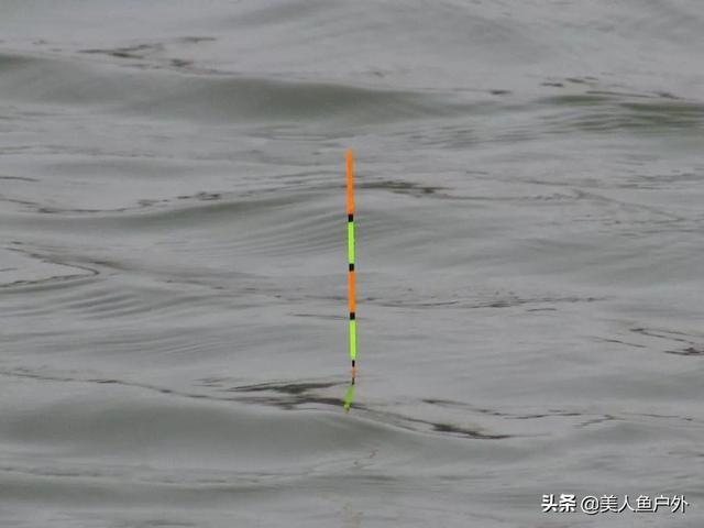 半水时一钓压2目,半水时一饵压4目,我调8钓2目,可以吗