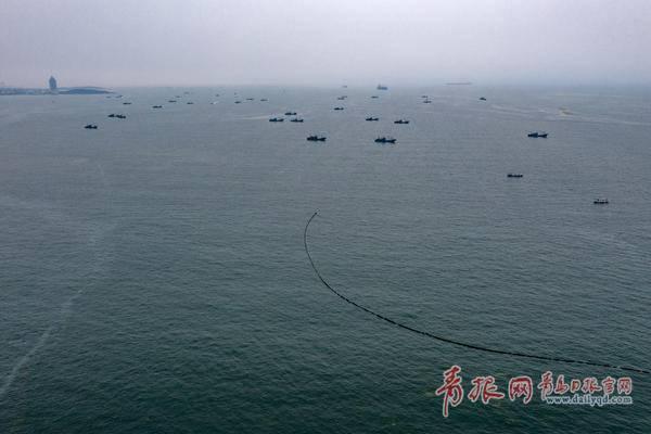 """浒苔提前到来,青岛早介入精细管,陆域""""打浒""""战全面开启"""